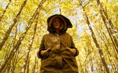 El poder liberador de Meditar en la Naturaleza
