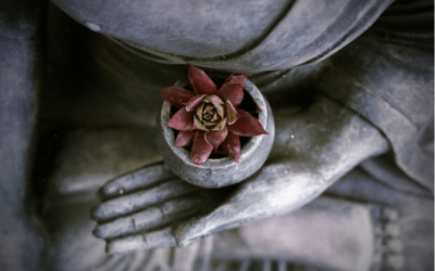 La meditación es un proceso de purificación
